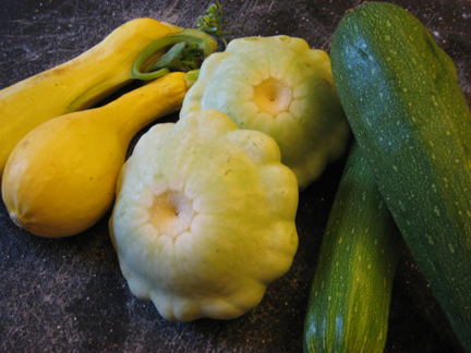 """A small sampling of squash:  yellow, """"flying saucer"""", and zucchini"""