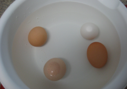 The wide end of the light brown and white eggs are floating to the top of the bowl of water.  These eggs are losing their freshness.