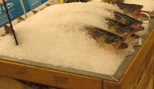 Whole Fish at Whole Foods
