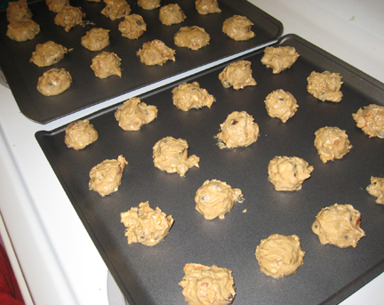 Compost Cookies Ready to Bake