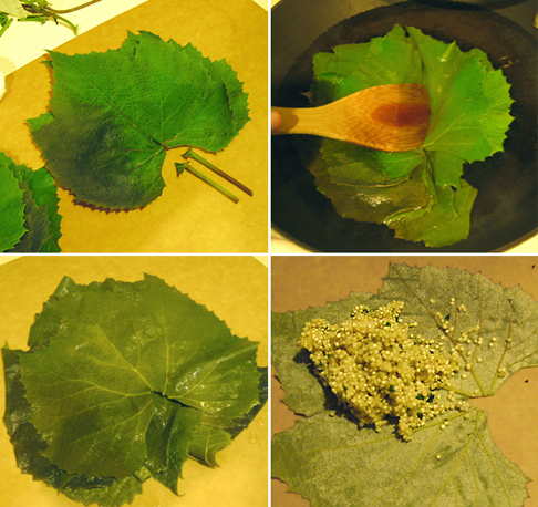 How to Blanch Grape Leaves