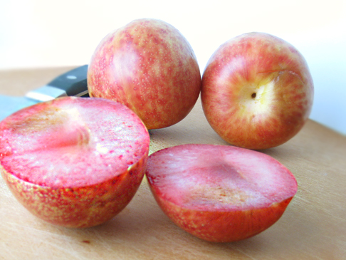 Pluots, a cross between a plum and an apricot