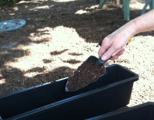 Filling a planter box with dirt