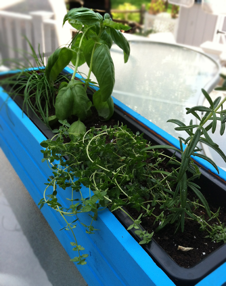 Making an herb planter box